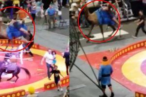Clip: Bị giật mình, lạc đà nổi loạn lao vào tấn công trẻ em trong rạp xiếc