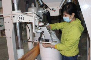 Gạo nếp gạo tẻ mang về cho Việt Nam 2,2 tỷ USD