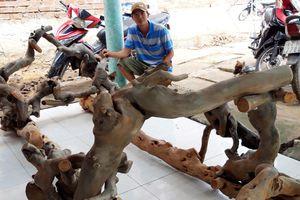 Độc đáo giá võng làm bằng cây cóc rừng hiếm thấy ở miền Tây