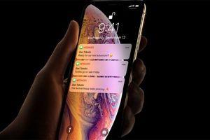 iPhone Xs Max là chiếc smartphone nặng nhất từ trước tới nay của Apple