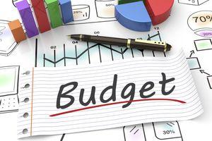 Điều chuyển 735 tỷ đồng dự toán kinh phí hoạt động của Tổng cục Thuế cho Tổng cục Hải quan