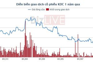 Vì sao lợi nhuận của Tập đoàn KIDO 6 tháng giảm so với cùng kỳ?