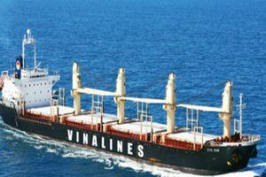 AIS và LRIT giám sát vị trí, hành trình tàu biển