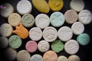 Tác hại 'chết người' của ma túy tổng hợp
