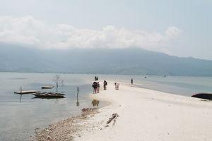 Thừa Thiên Huế: Đầm Lập An bị bồi lắng nghiêm trọng, nguy cơ ô nhiễm cao