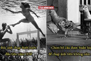 16 hình ảnh lịch sử có thể khiến bạn choáng váng, bồ câu được huấn luyện như flycam