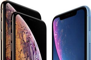 Thật bất ngờ: Không phải iPhone Xs Max, iPhone XR mới là iPhone 'trâu' nhất lịch sử Apple