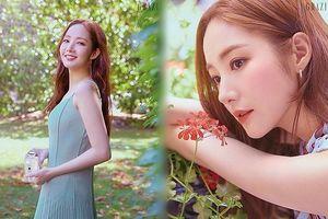 'Thư ký Kim' Park Min Young xinh đẹp hoàn hảo ngây ngất
