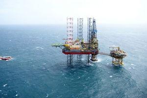PV Drilling cùng những tín hiệu khởi sắc