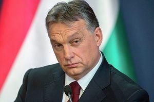 Hungary muốn gia nhập 'sân chơi' Dòng chảy Thổ Nhĩ Kỳ