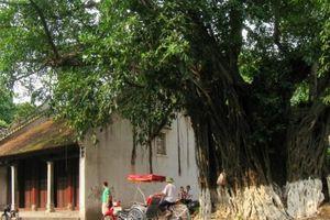 Dự báo thời tiết hôm nay 20/9: Hà Nội Sài Gòn đón nắng, mưa rào rải rác trong ngày