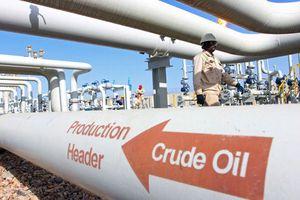 Giá dầu giảm do ông Trump kêu gọi OPEC giữ giá ở mức thấp