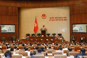 Quy định của Hiến pháp 2013 về Chủ tịch nước