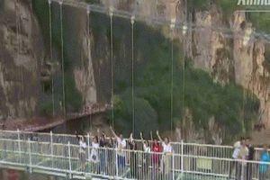 Run rẩy đi trên cầu treo thủy tinh 5D ở Trung Quốc