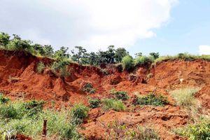 Sụt lún đất chôn vùi vườn cà phê, phá hủy đường dân sinh