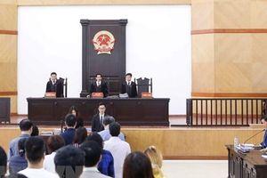 Chánh án Nguyễn Hòa Bình: Đẩy nhanh tiến trình phát triển án lệ