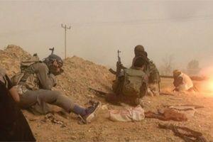 IS phản đòn lại phiến quân người Kurd tại Deir Ezzor, Syria
