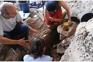 Tìm thấy nhà máy bia cổ có niên đại 13.000 năm ở Israel