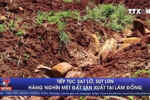 Tiếp tục sạt lở, sụt lún hàng nghìn mét đất sản xuất tại Lâm Đồng