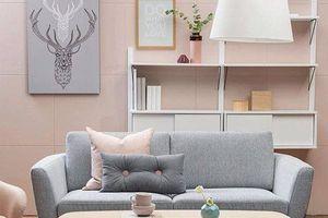Với 5 triệu đồng liệu bạn có thể mua được một bộ sofa đẹp?