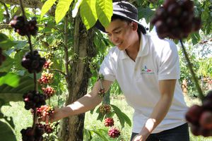 42 dự án tranh tài dự án Khởi nghiệp nông nghiệp lần 4 tại TP.HCM