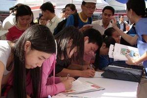 Người thất nghiệp có trình độ đại học giảm