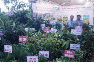 Quảng Ngãi: Giới thiệu sản phẩm và hàng Việt Nam năm 2018