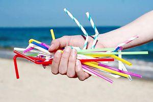 Nhà hàng ở California cấm dùng đồ nhựa 1 lần
