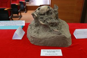 Phát hiện xương người tiền sử tại hang động núi lửa Krông Nô (Đắk Lắk): Cần sớm được lập hồ sơ xếp hạng di tích
