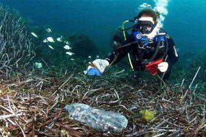 99,99% rác nhựa trên biển hóa ra nằm sâu dưới đại dương.