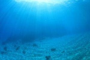 Sử dụng Robot để khám phá nguồn khoáng sản dưới đáy đại dương