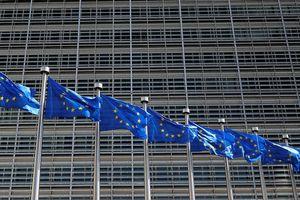 EU lo ngại sự tăng cường hiện diện quân sự của Nga trên biển Azov