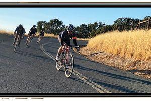 Mẫu iPhone mới nào hợp với bạn?
