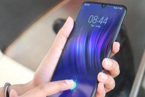 Vivo V11 về Việt Nam: Cảm biến vân tay dưới màn hình, AI toàn diện