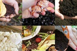 6 loại rác trong bếp khi mang ra vườn, vài tuần sau rau lên vùn vụt