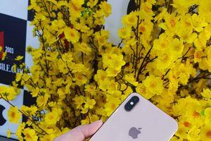 Giá iPhone XS Max tại Việt Nam giảm gần một nửa sau 2 ngày mở bán