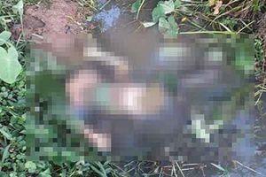 Đi chơi Trung thu, thiếu nữ 15 tuổi được phát hiện chết dưới mương