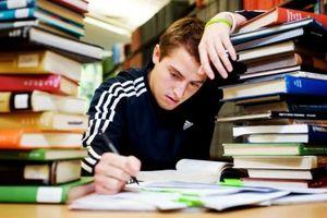Nhiều bài tập ở nhà, hiệu quả giáo dục càng thấp