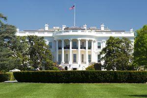 Nhà Trắng có thể thực hiện thăm dò chống độc quyền với Google và Facebook