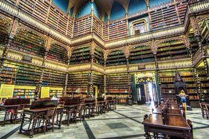 Chùm ảnh: 12 thư viện đẹp nhất thế giới