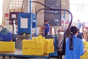 Chiến tranh thương mại Hoa Kỳ-Trung Quốc 'kéo tụt' xuất khẩu cao su?