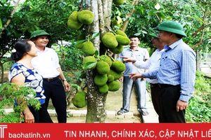 Những người 'truyền lửa' nông thôn mới ở Hà Tĩnh