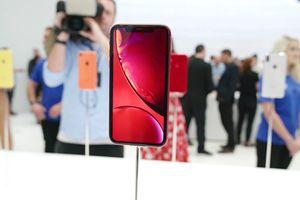 Ngắm trọn vẹn 6 màu máy tuyệt đẹp của iPhone Xr khiến bạn chẳng còn muốn mua iPhone Xs và Xs Max