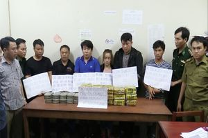 Hà Tĩnh: Bắt đường dây vận chuyển 15kg ma túy đá và 20 bánh heroin