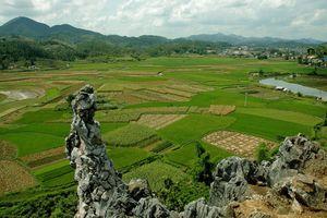 Lạng Sơn: Quy định mới về diện tích tối thiểu được phép tách thửa đối đất nông nghiệp