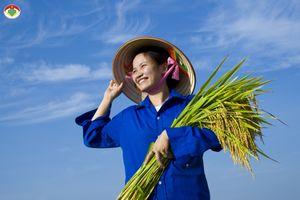 Bình chọn ảnh Tuần thứ Ba: Chủ đề về ngành nông nghiệp lên ngôi