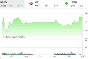 Phiên chiều 24/9: Dòng bank đuối sức, VN-Index vẫn thẳng tiến qua ngưỡng 1.010 điểm