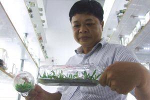 Hai anh 'Hai Lúa' cả gan bỏ hơn 10 tỷ lập phòng cấy mô hoa lan