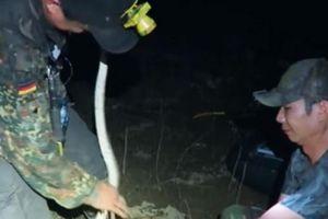 Ớn lạnh, nước tràn đồng, đêm đi săn rắn mùa lũ ở An Giang