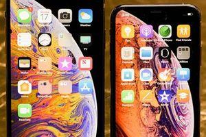 Apple đang kinh doanh một thứ 'hái' ra tiền, nhưng không phải ai cũng biết